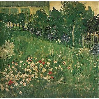 Daubigny ' s Garden, Vincent Van Gogh, 50.7 x 50.7 cm