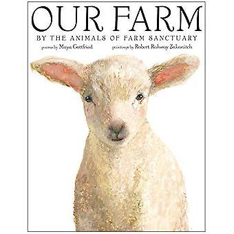 Notre ferme: Les animaux de ferme sanctuaire