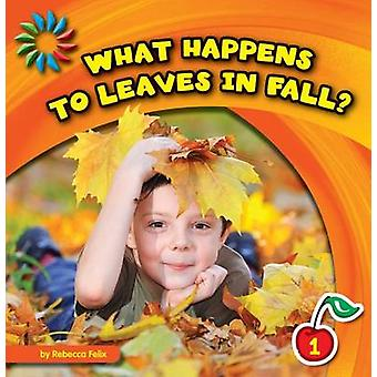 What Happens to Leaves in Fall? by Rebecca Felix - 9781610809092 Book