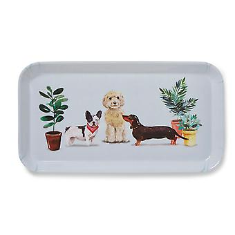 Cooksmart Curious Dogs Small Tray