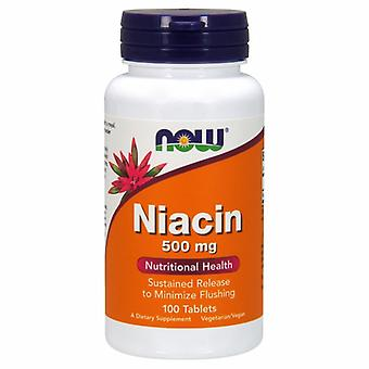 Now Foods Niacin 500 mg, 100 Tabs
