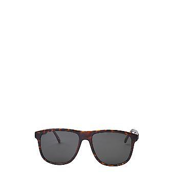 Saint Laurent SL 334 dunkle havanna männliche Sonnenbrille