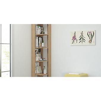 Libreria Seth Colore Rovere, in Truciolare Melaminico L34xP34xA161 cm