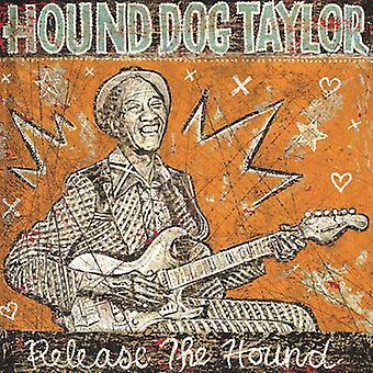Importación de Hound Dog Taylor - lanzamiento el sabueso [CD] Estados Unidos