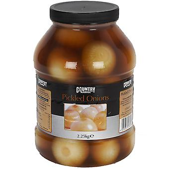 Country Range Pickled Onions