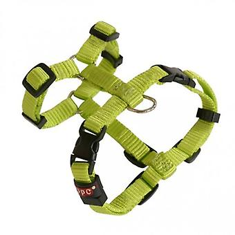 Arppe Harness Nylon Basic Olive Green (Dogs , Collars, Leads and Harnesses , Harnesses)