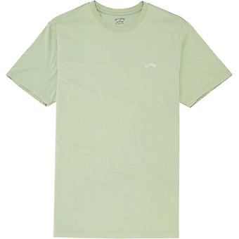 Billabong Men's T-shirt ~ Arch Washed spearmint