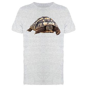 Heavy, Hermann's Tortoise Tee Men's -Image by Shutterstock