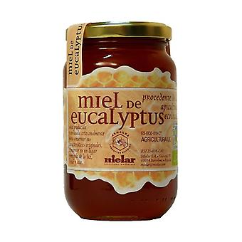 Organic Eucalyptus Honey 500 g