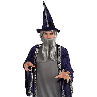 Wizard Merlin Magician Sorcerer Men Costume Grey Forked Beard