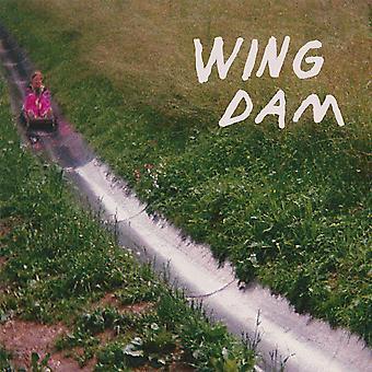 Wing Dam - Glow Ahead Vinyl