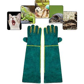 Gants anti-morsures pour la manipulation des animaux, Gants de travail en cuir de sécurité pour le bain, le toilettage, la manipulation du chien, du chat, de l'oiseau, du serpent, du lézard, du reptile - Gants de protection