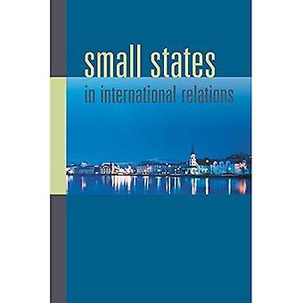 Kleine staten in de internationale betrekkingen (nieuwe richtingen in Scandinavische Studies)