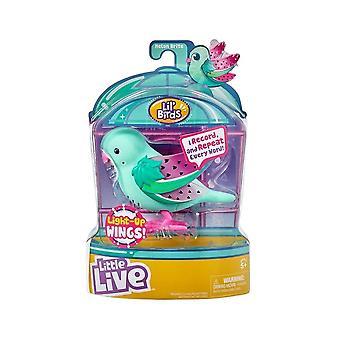 Little Live Pets Light Up Songbirds S9 (Melon Brite)