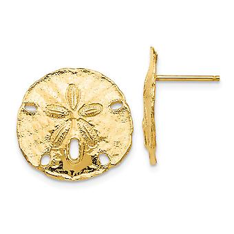 14k Yellow Gold Textured Polished Large Sanddollar Post Earrings Jewelry Gifts for Women - 3.3 Grams