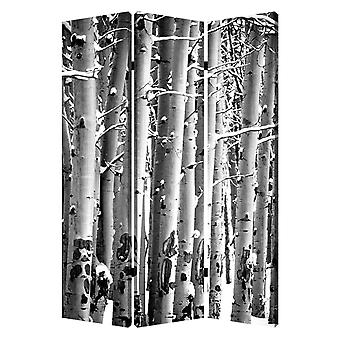 "1"" x 48"" x 72"" Multi Color Wood Canvas Birch  Screen"
