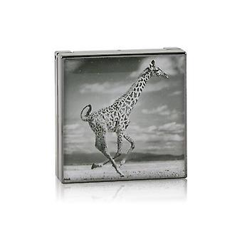 Chantecaille Luminescent Eye Shade - # Giraffe (burnished Brown) - 2.5g/0.08oz