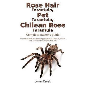 Rose Hair Tarantula Pet Tarantula Chileense Rose Tarantula Complete eigenaren gids door Karrek & Jowan