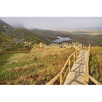 Ireland, County Fermanagh, Cuilcagh Mountain Park, Legnabrocky Trail to summit. Large Framed.