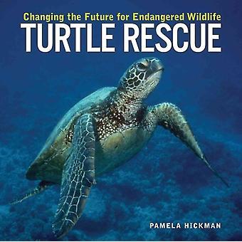 Turtle Rescue by Pamela Hickman