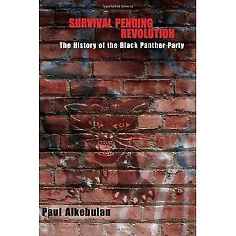 Überlebensrate bis Revolution: Die Geschichte der Black Panther Party