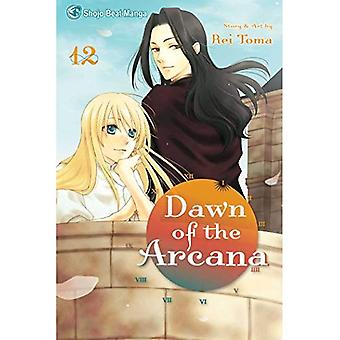DAWN OF THE ARCANA GN VOL 12