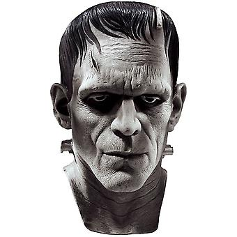 Mask For Frankenstein Costume