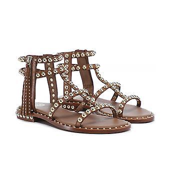 Ash Leather Power Studded Gladiator Sandals