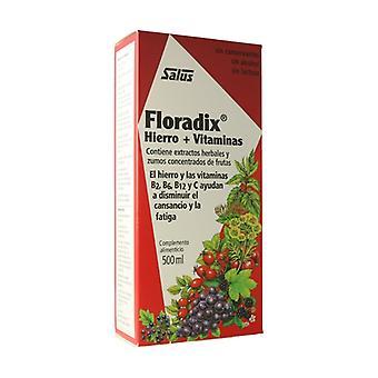 Floradix IJzer 500 ml