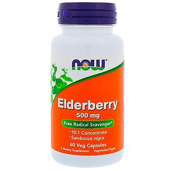 Now Foods, Holunder, 500 mg, 60 Veg Kapseln
