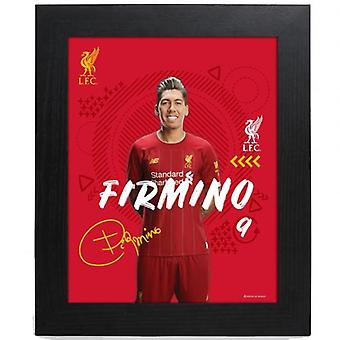 Liverpool Picture Firmino 10 x 8