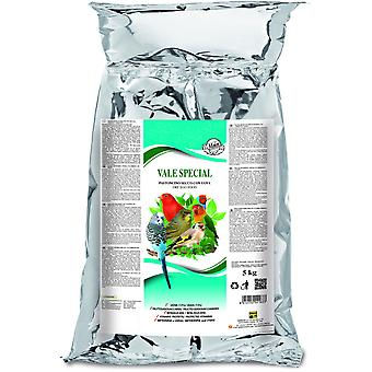 Maior Excellent 5 Kg (Dry Paste With Rice inflated and No Dyes) (Birds , Hand Rearing)