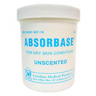 Absorbase for dry skin conditions, unscented, 1 lbs