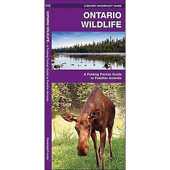 Ontario Wildlife - A Folding Pocket Guide to Familiar Species (2nd Rev