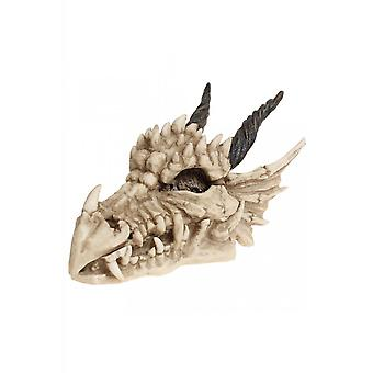 Nemesis Now Dragon Skull Box