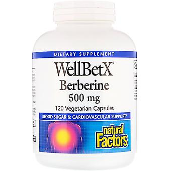 Natürliche Faktoren, WellBetX, Berberin, 500 mg, 120 vegetarische Kapseln