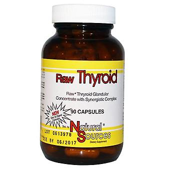 Natural Sources Raw Thyroid, 90 Caps