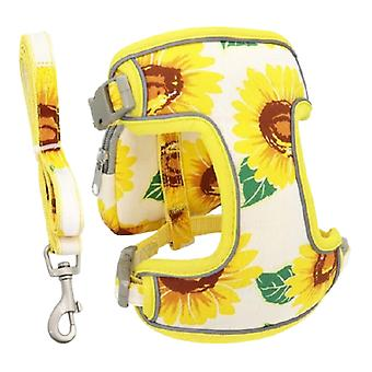 Puppy dog harness with leash