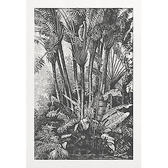 JUNIQE Print - Palms in Water - Feuilles & Plantes Poster en Gris & Noir