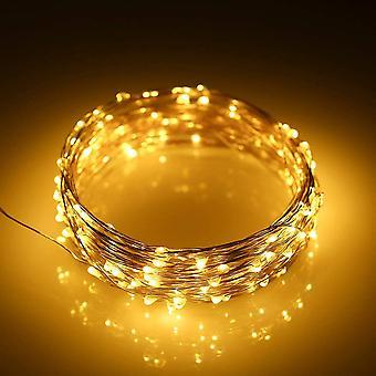 Led Ring Light 10m100 Lamp Starlight Kuparilanka 3aa Akun virtalähde, Lämmin Valkoinen