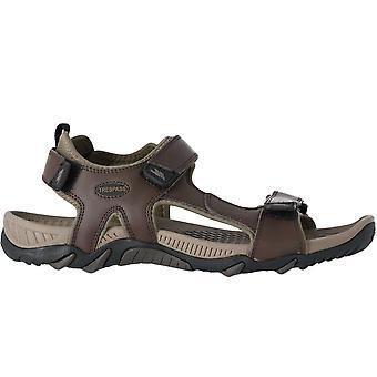 Trespass miesten barkon nahka ulkona kävely vaellus aktiivinen sandaalit - tummanruskea