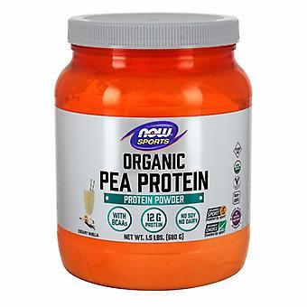 Nu voedingsmiddelen biologische erwten eiwit, vanille 1,5 pond