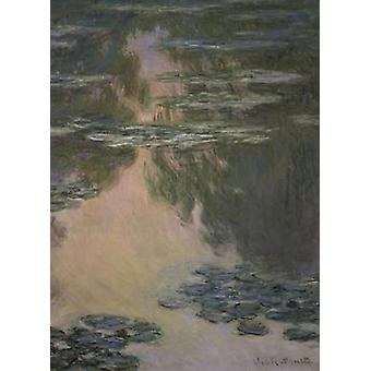 Water Lilies - with Willows Poster Print by  Claude Monet
