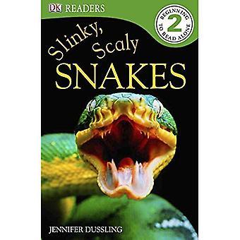 Slinky, schuppige Schlangen! (DK-Leser: Ebene 2