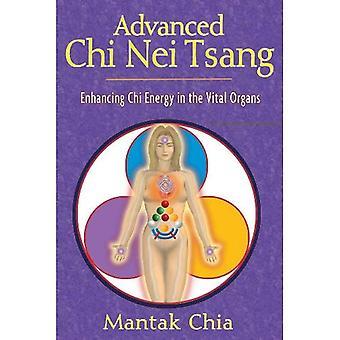 Geavanceerde Chi Nei Tsang: Verbetering van de Chi energie in de vitale organen
