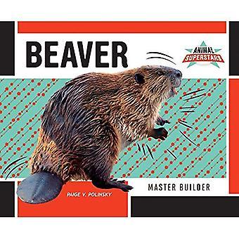Beaver: Master Builder (Animal Superstars)