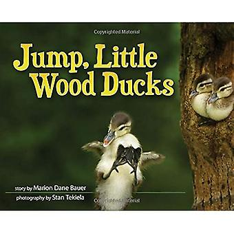 Jump, Little Wood Ducks (Wildlife Picture Books)