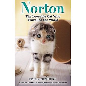 Norton, le chat adorable qui a voyagé dans le monde
