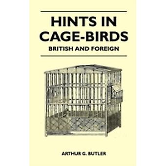 Hints in CageBirds  British and Foreign by Butler & Arthur G.