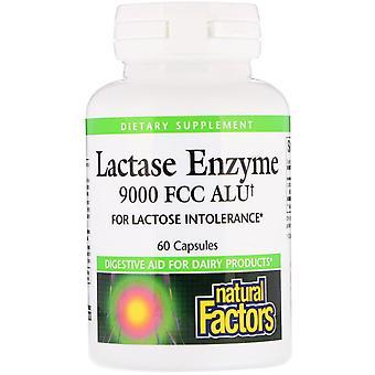 Natural Factors, Lactase Enzyme, 9000 FCC ALU, 60 Capsules